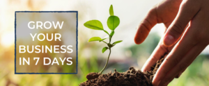 Grow Your Business Course